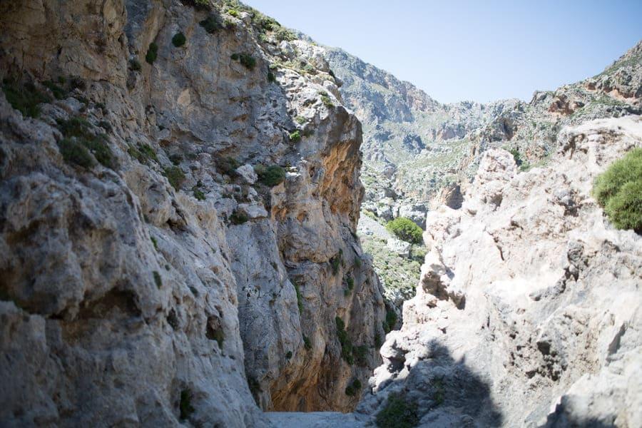 Превели на Крите